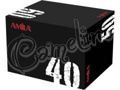 PLYOMETRIC BOX 40Χ50Χ60 ΕΚ